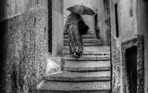 Umbrella Goes To The Lane