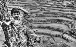 Boy And Rice Terraces