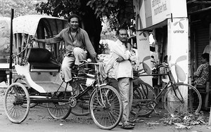 Cycle Rickshaws By The Roadside