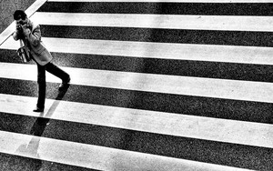 Man On The Zebra Crossing