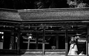 Two Shinto Priests In Kotohira-Gu