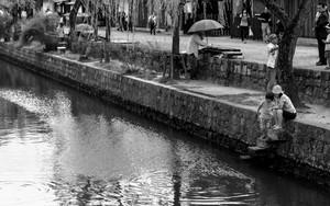 倉敷川の畔