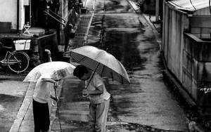 二本の傘と排水溝