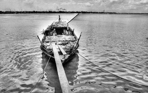 係留されていたボート