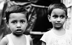 Big-eyed Brothers