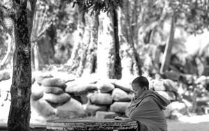 Studying Monk