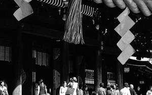 明治神宮の七五三縄と紙垂