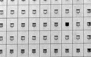 Windows In A Grid