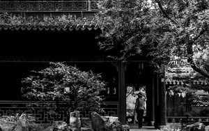 Rambling In Yuyuan Garden