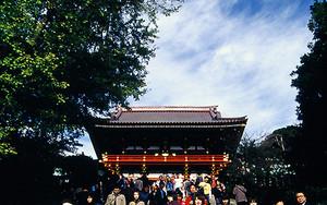 鶴岡八幡宮の急な階段