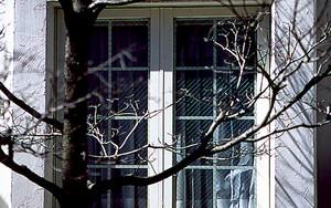 白い家の出窓