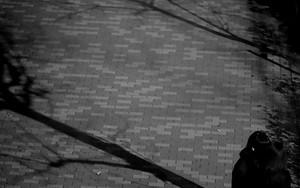 Couple On The Sidewalk