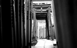 根津神社の鳥居