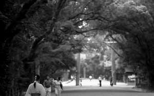 Female Attendant Walking In Atsuta Jingu