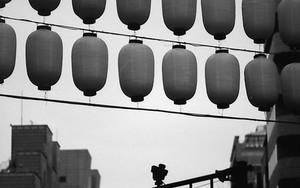 Silhouttes Of Lanterns In Yaskuni Jinja