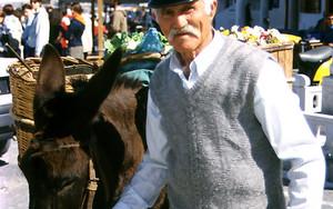 立派な口髭の男と驢馬