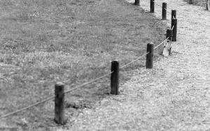 小径を歩くふたりの女性