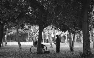 代々木公園のサックス奏者