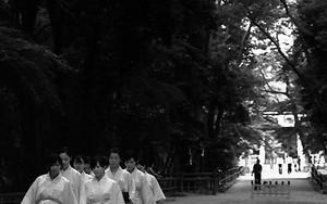 Priestess In Shimogamo Jinja