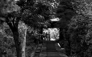 Stairs In Kodai-Ji