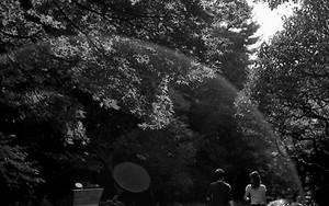 柔らかい日差しの中を歩くカップル