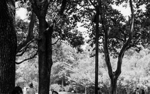 魯迅公園で携帯電話