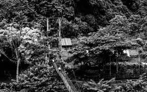 Bridge Of The Village