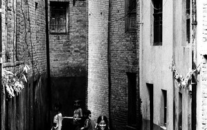 Kids In The Alley