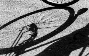 Shadow Of Wheel