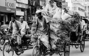 Not Only Human Rides Rickshaw