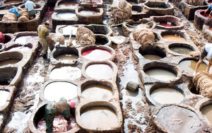 Many Tanning Pits In Tanneries