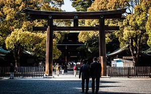 Business Suits In Meiji Jingu