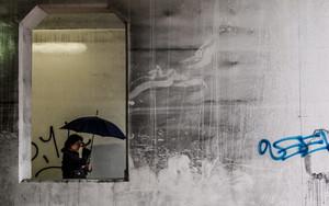 フレームの中の傘