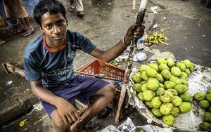 Boy Selling Mangoes