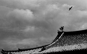 Flying Bird And Perching Bird In Byodo-In