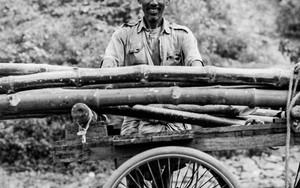 Cart And Man