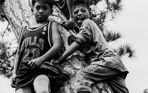Three Boys Around A Tree