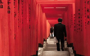 Businessman In Torii