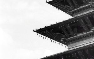 屋根の上のふたり