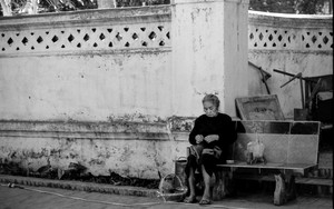 Older Woman Sitting On The Bench