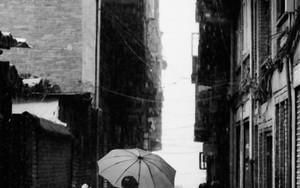 豪雨の中の傘