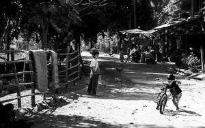 幼い男の子と自転車