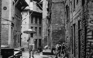 路地裏の傘