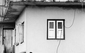 ベランダにいた女性とトタン屋根の上の犬