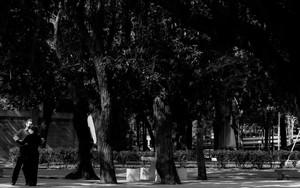 Social Dance In The Park