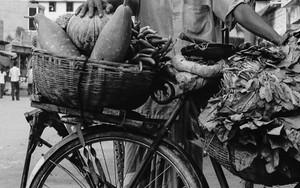 自転車の上の満杯の籠