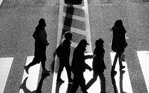Crossing Silhouettes And Shadows