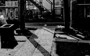 Silhouette Of Torii In Tohkamori Inari