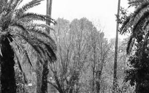 激しい雨の中を歩く男