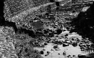 中島川の川辺